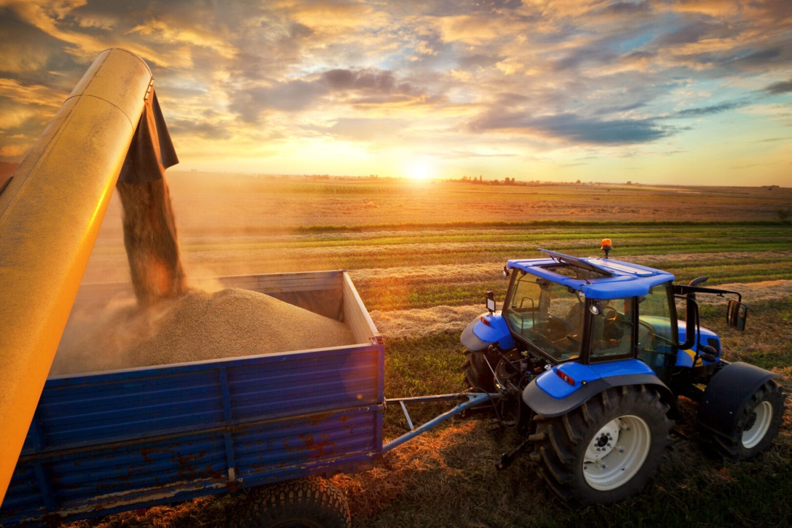 Combine Harvester and tractor